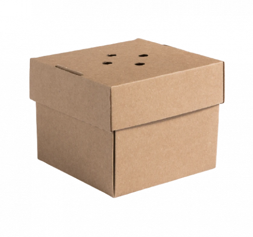Burger Boxes Packaging